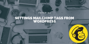 Setting MailChimp tags from WordPress